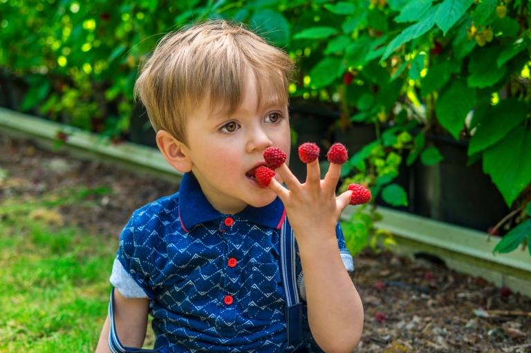 Fattorie didattiche per bambini Lombardia